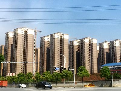 长望路绿化提质yzc亚洲城手机版